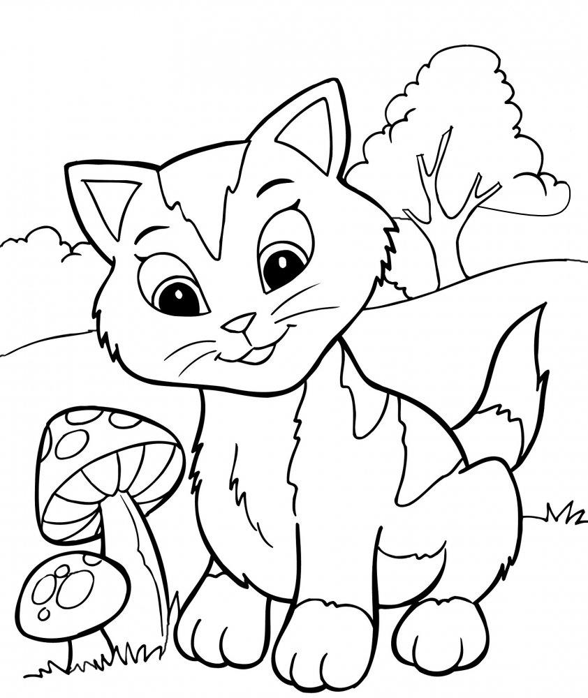 Котик на полянке с грибами » Раскраски для детей ...