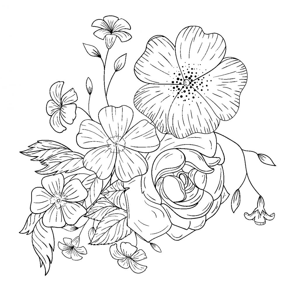 Полевые цветы » Раскраски для детей распечатать бесплатно ...