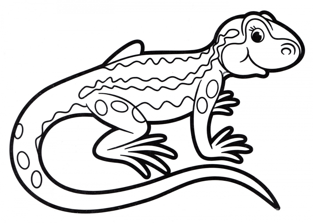Раскраска ящерица - скачать раскраску из раздела ящерицы ...